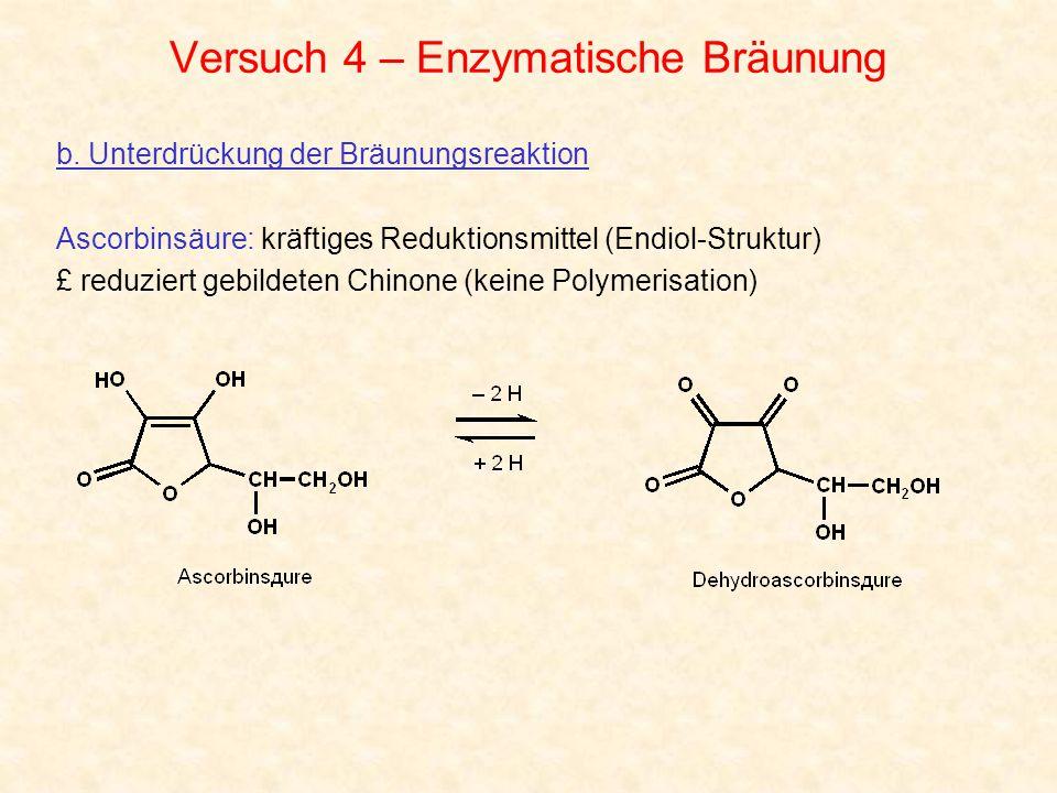 Versuch 4 – Enzymatische Bräunung