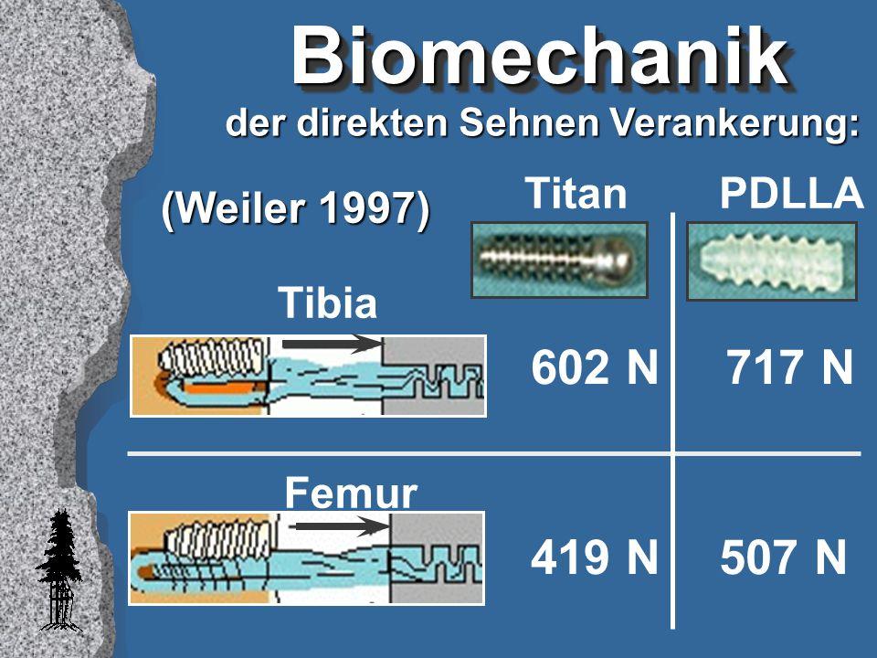 Biomechanik 602 N 717 N 419 N 507 N Titan PDLLA (Weiler 1997) Tibia