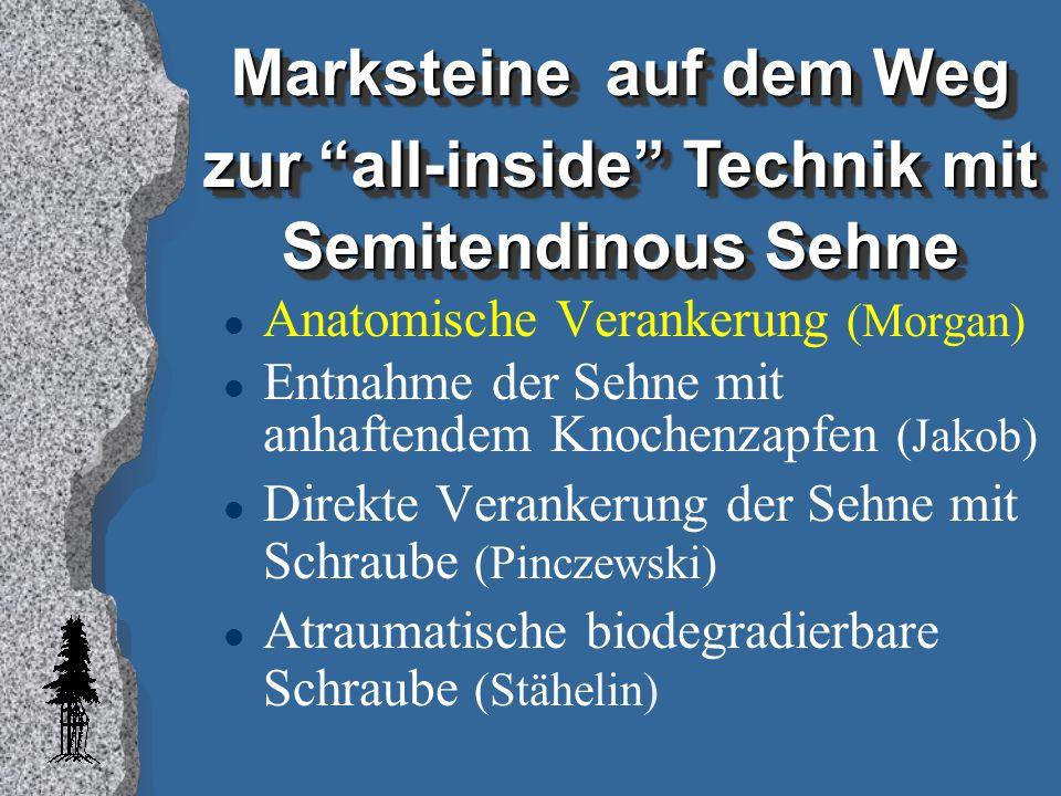 Marksteine auf dem Weg zur all-inside Technik mit Semitendinous Sehne
