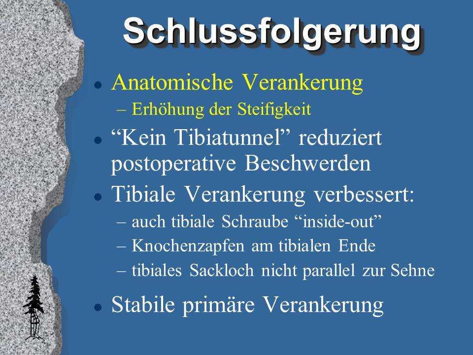 Schlussfolgerung Anatomische Verankerung