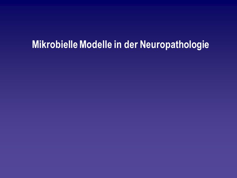 Mikrobielle Modelle in der Neuropathologie