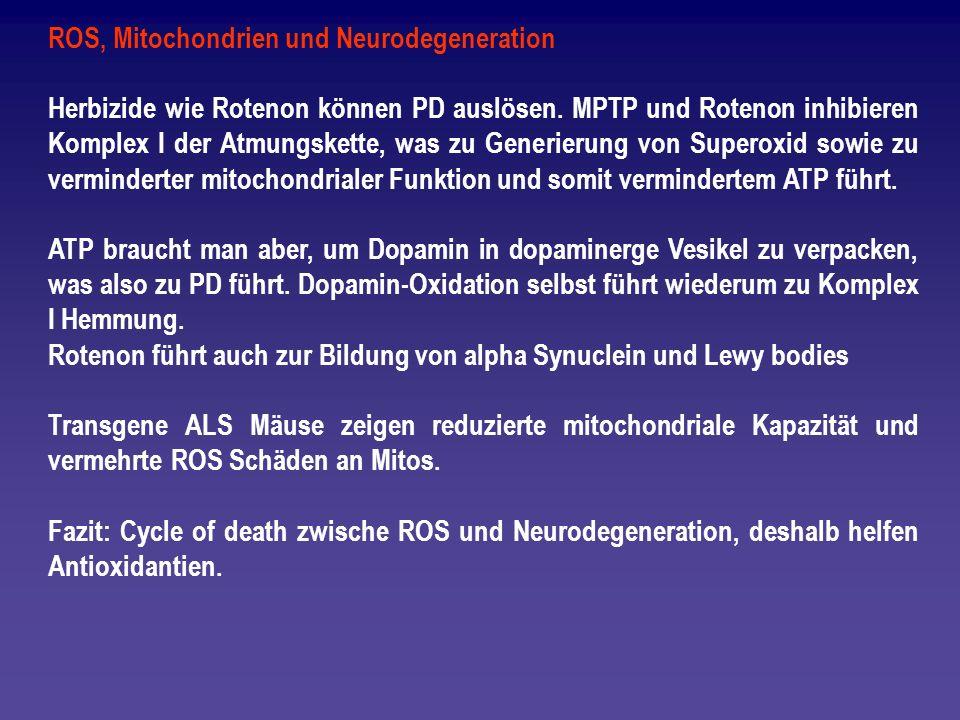 ROS, Mitochondrien und Neurodegeneration
