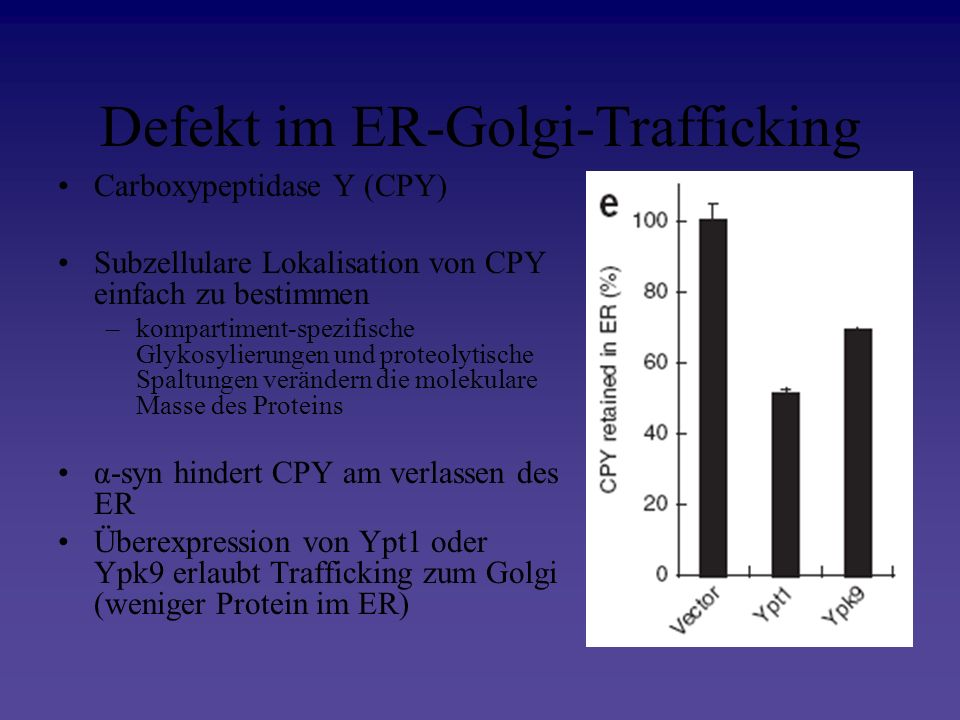 Defekt im ER-Golgi-Trafficking