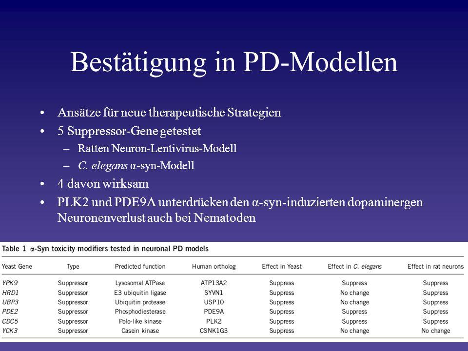 Bestätigung in PD-Modellen