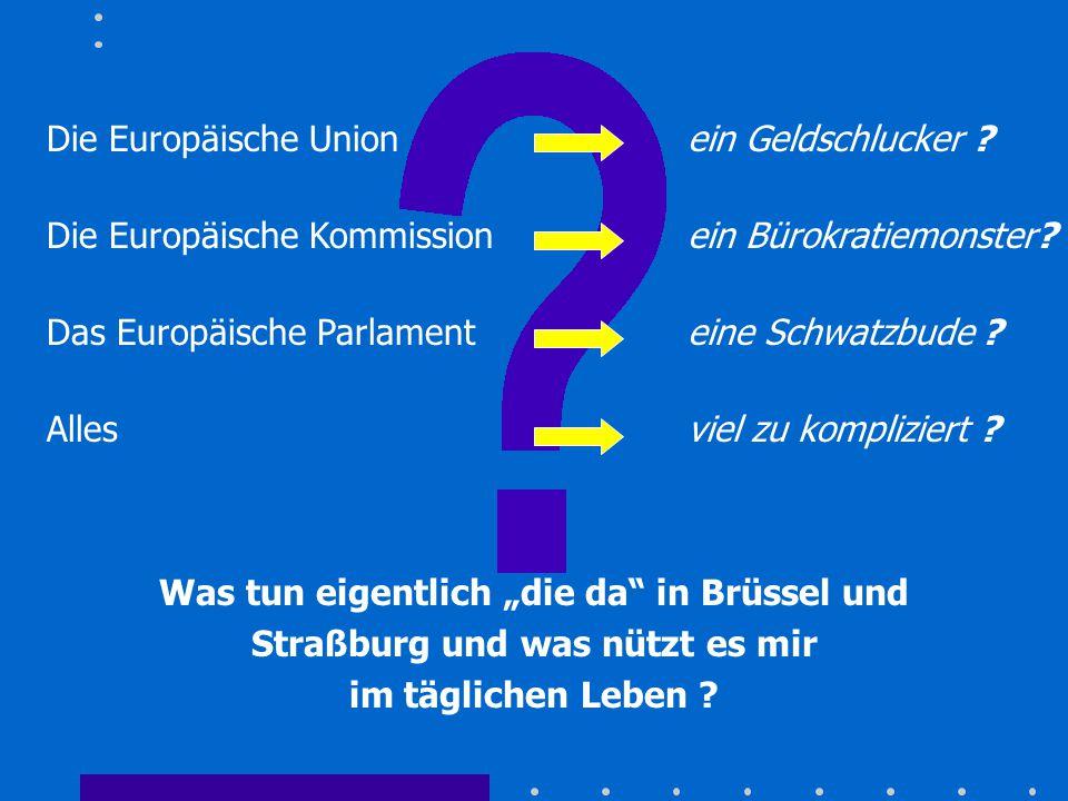 Die Europäische Union ein Geldschlucker