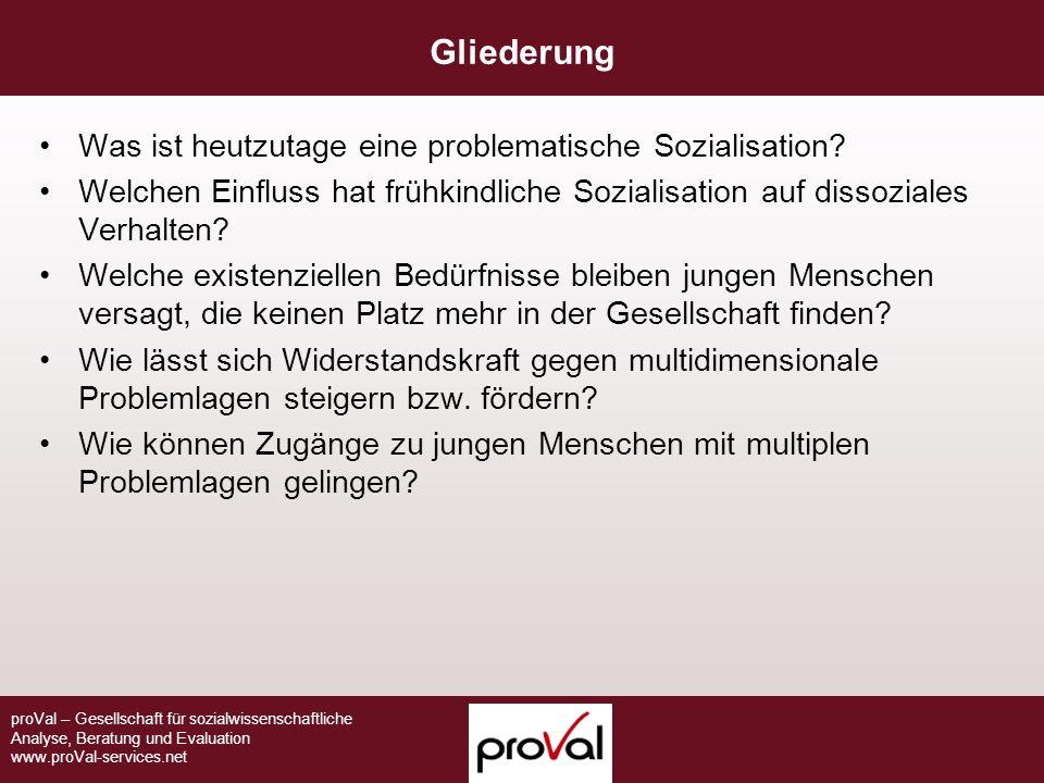 Gliederung Was ist heutzutage eine problematische Sozialisation