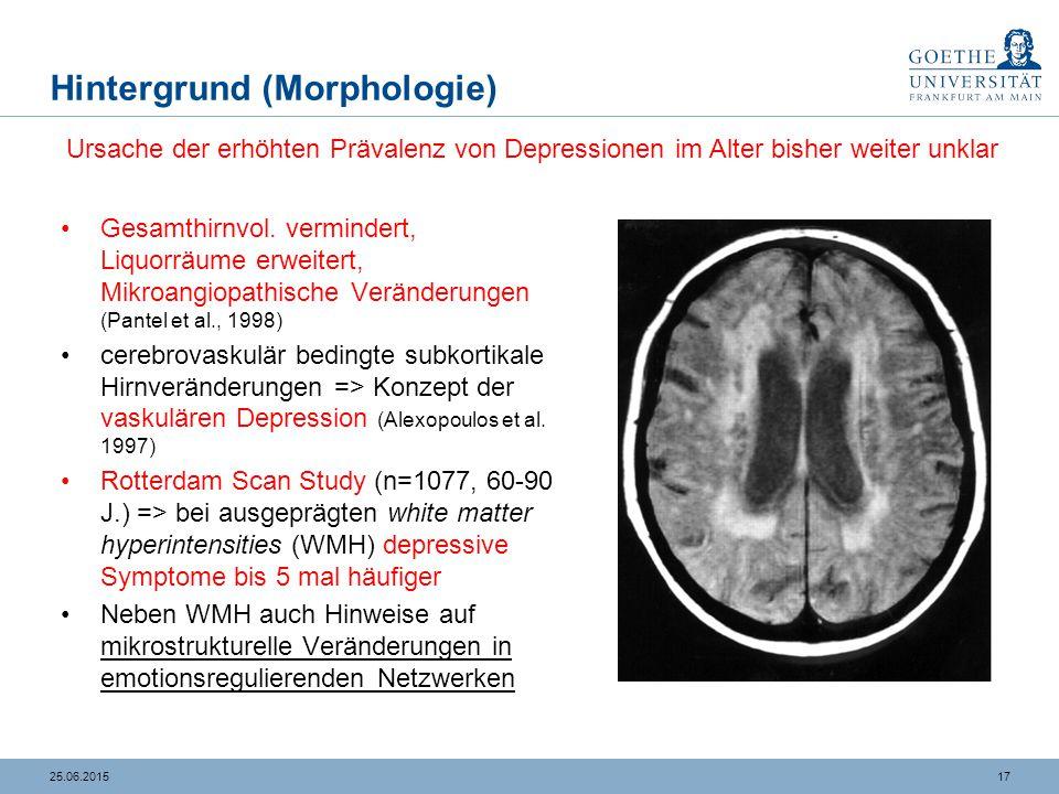 Korrelation kognitive Parameter und regionale Schädigung bei der Altersdepression