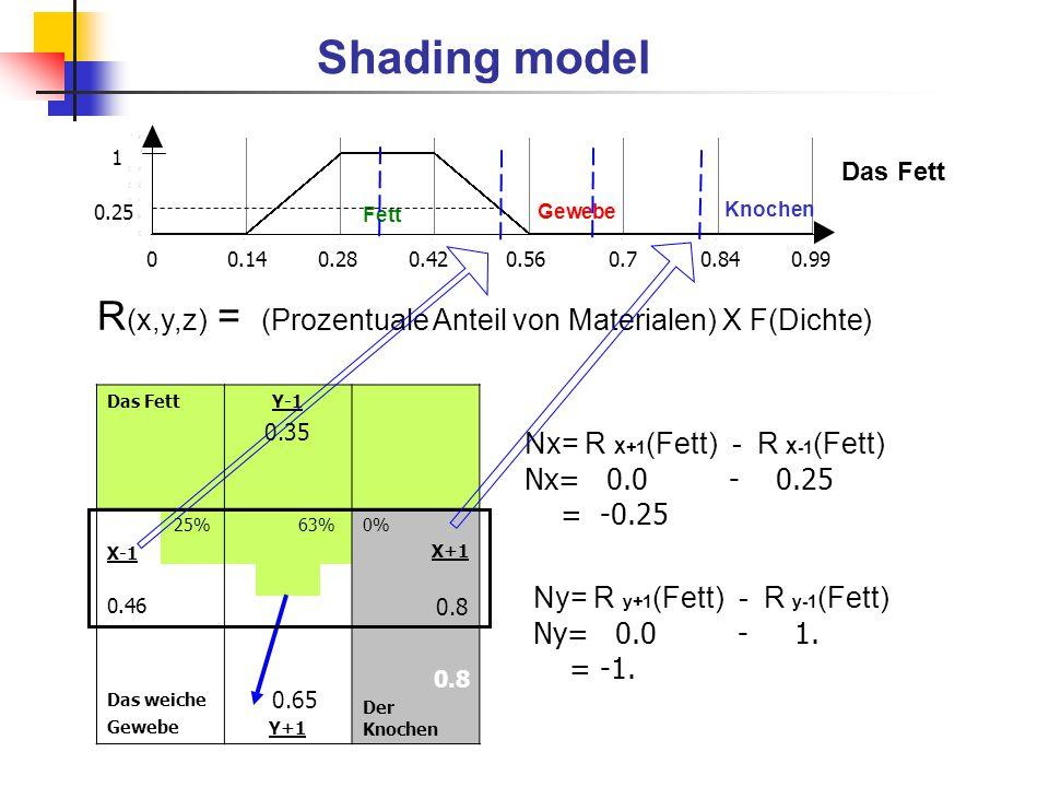 Shading model 1. Das Fett. 0.25. Fett. Gewebe. Knochen.