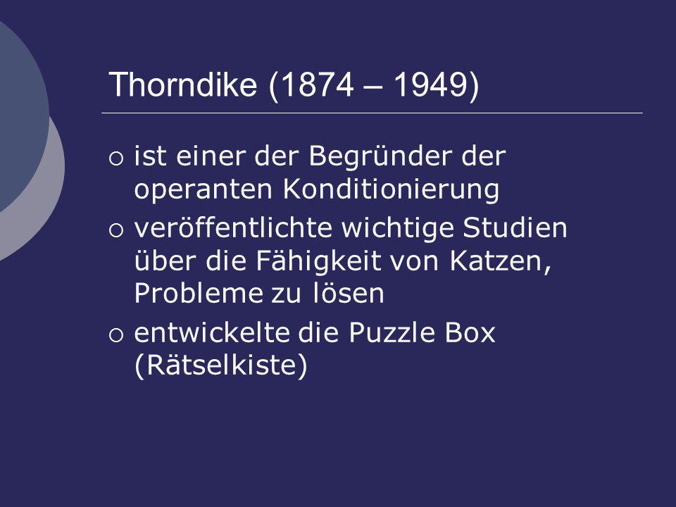 Thorndike (1874 – 1949) ist einer der Begründer der operanten Konditionierung.