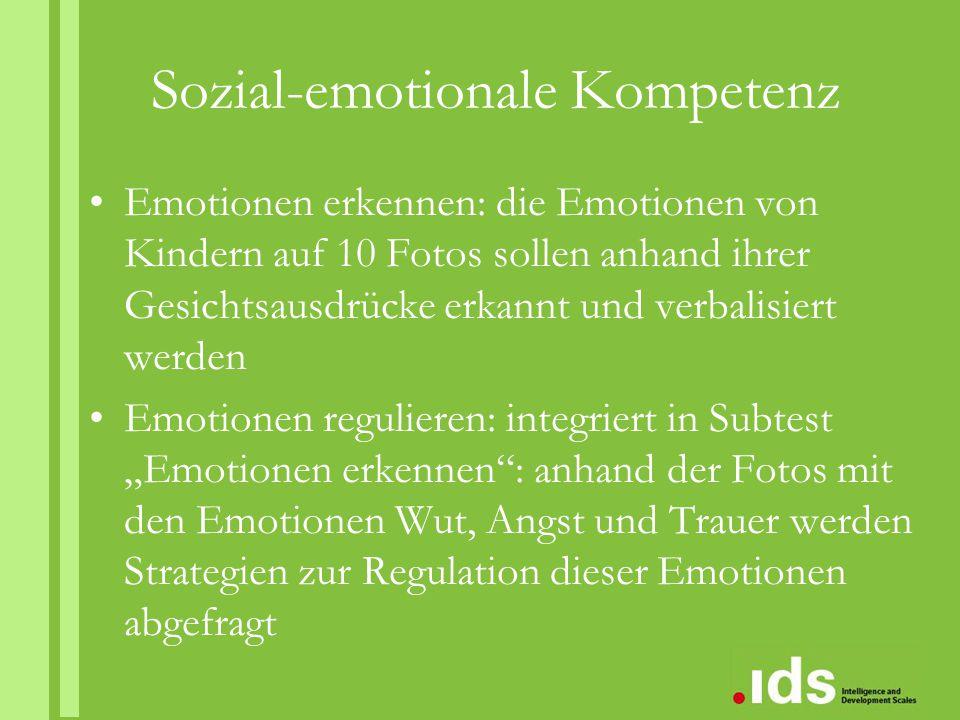 Sozial-emotionale Kompetenz