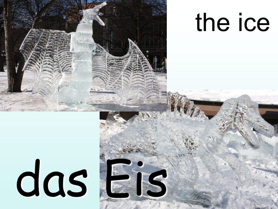 the ice das Eis