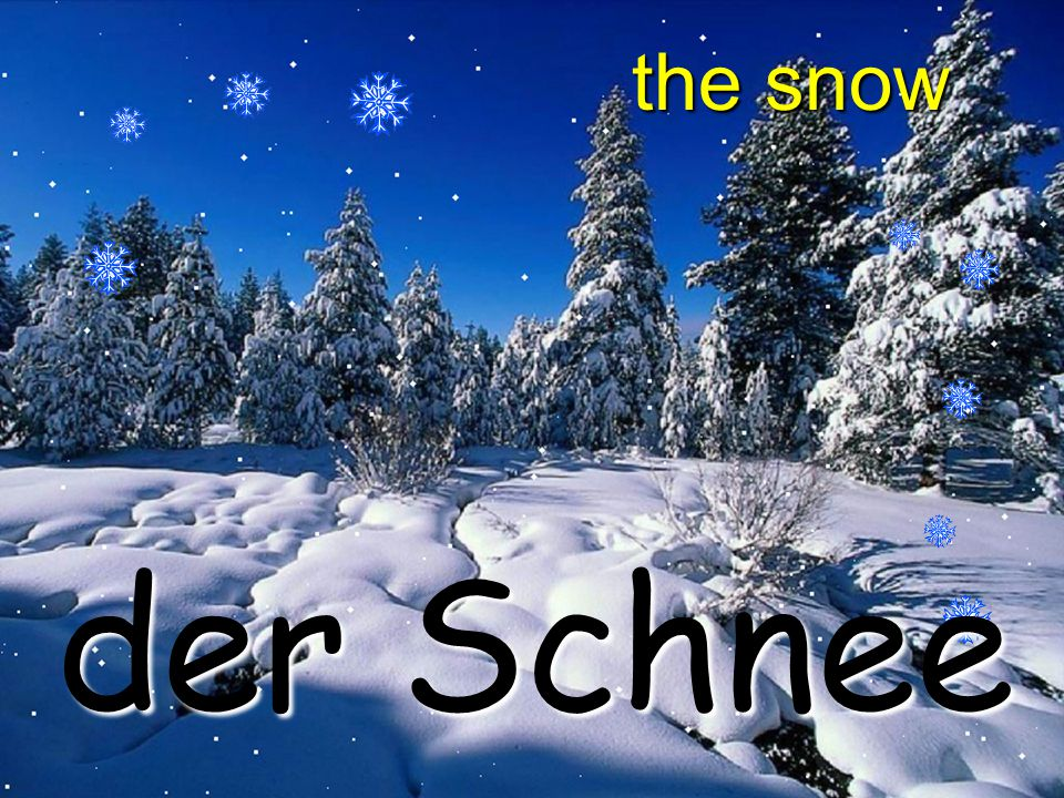 the snow der Schnee