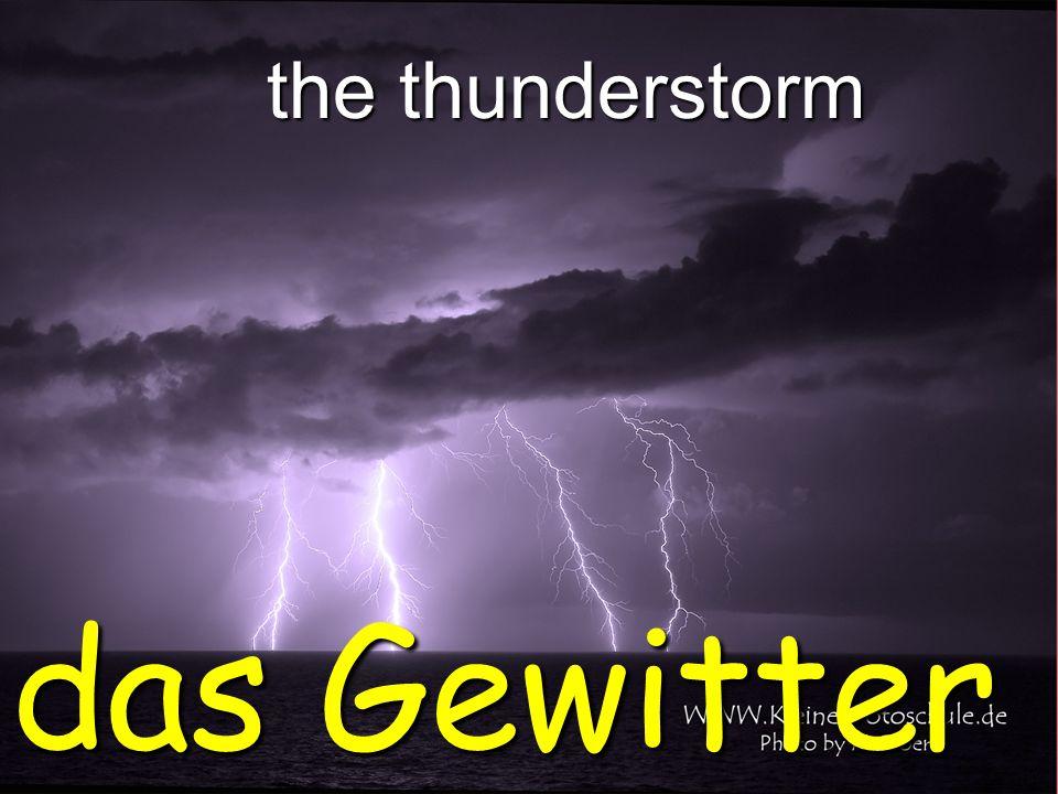 the thunderstorm das Gewitter