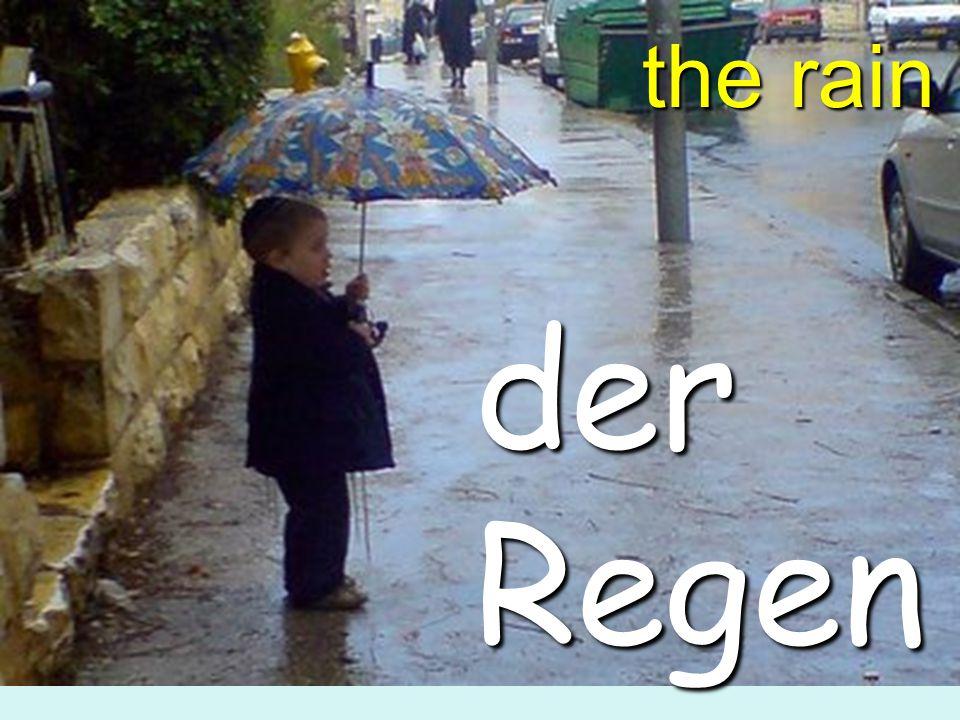 the rain der Regen