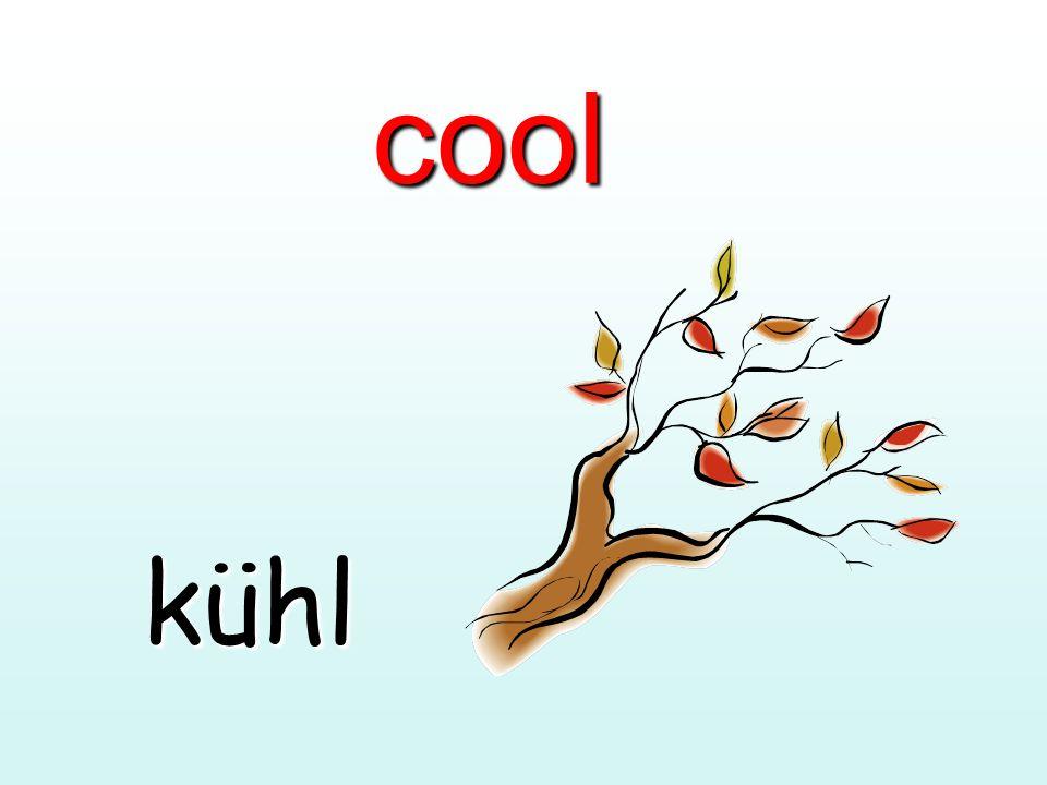 cool kühl