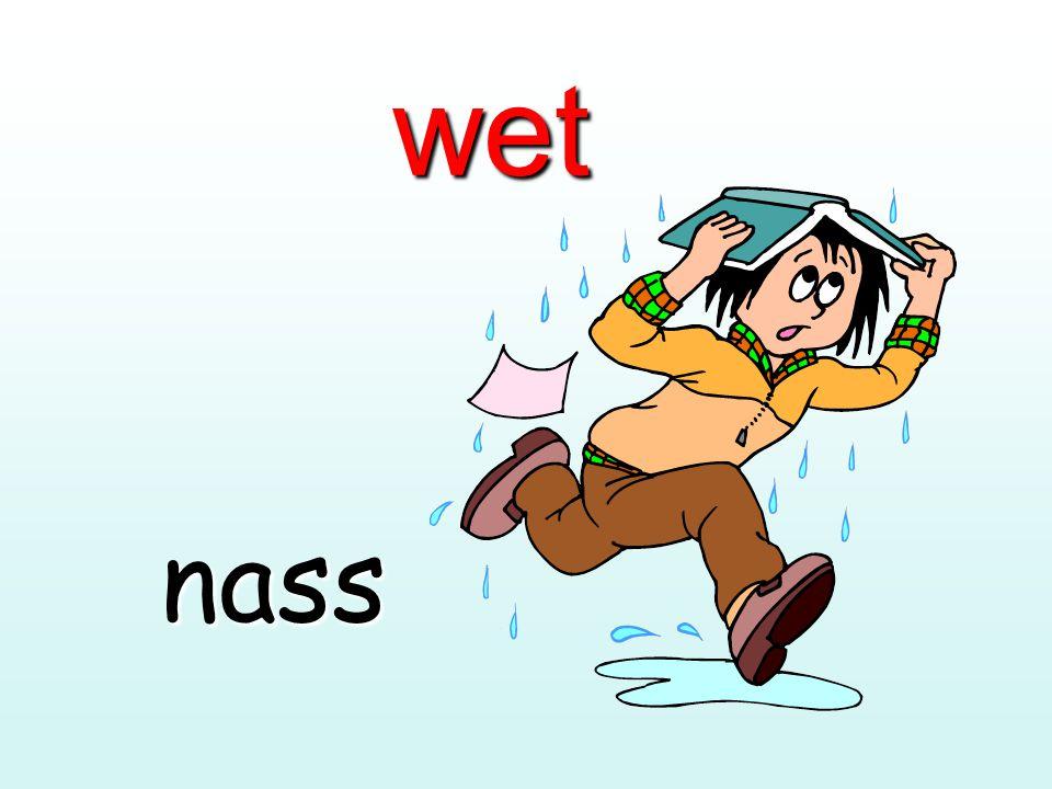 wet nass