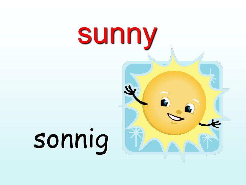 sunny sonnig