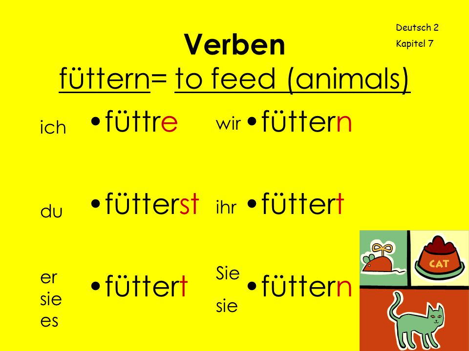 Verben füttern= to feed (animals)