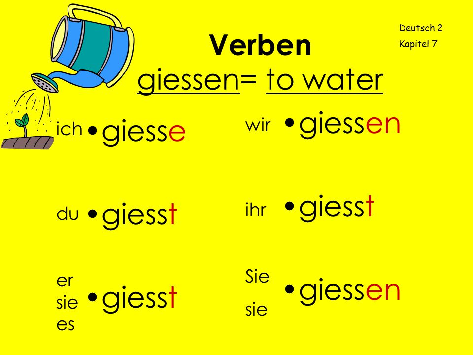 Verben giessen= to water