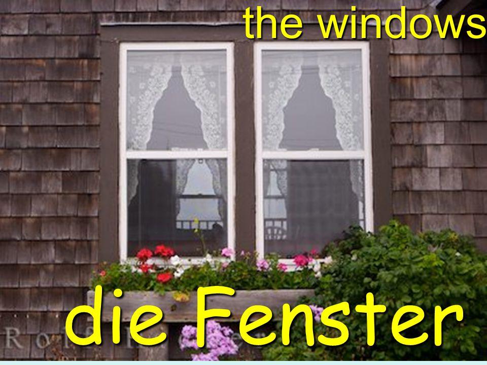 the windows die Fenster