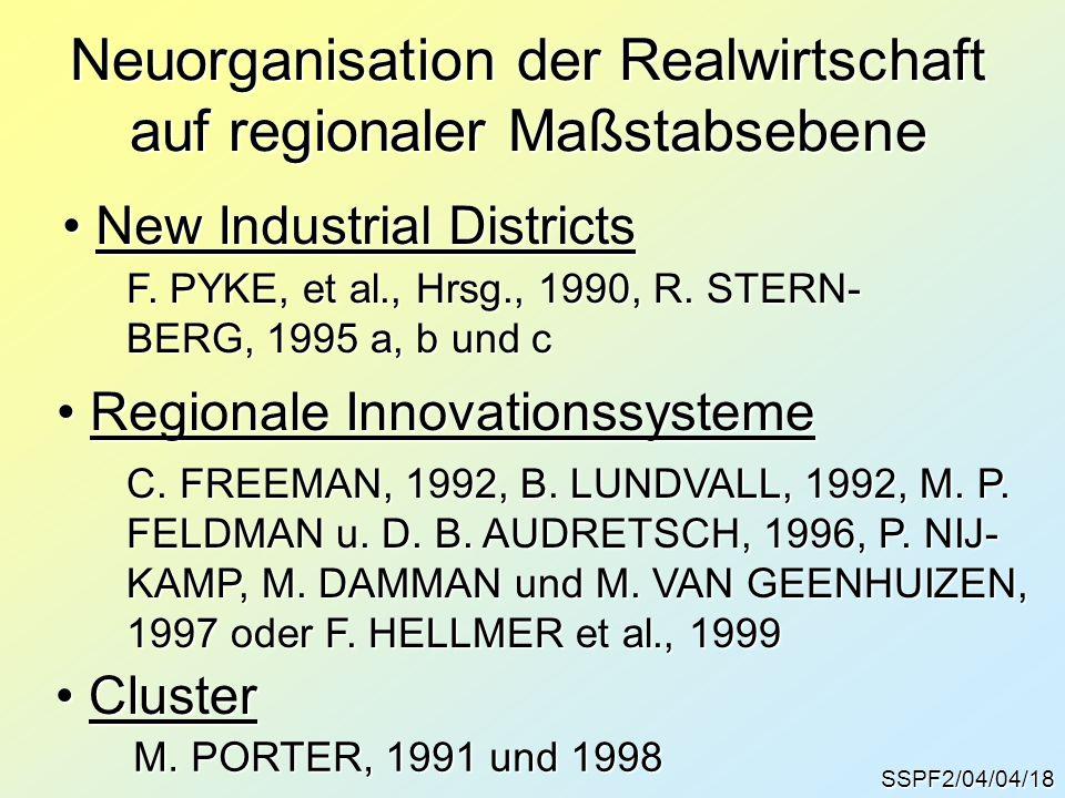 Neuorganisation der Realwirtschaft auf regionaler Maßstabsebene
