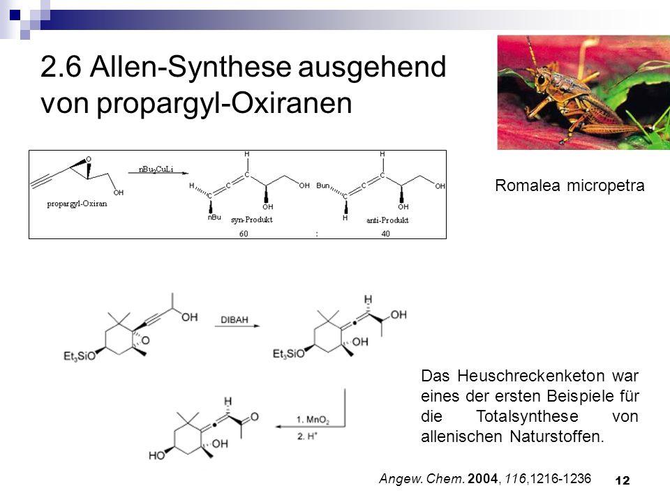2.6 Allen-Synthese ausgehend von propargyl-Oxiranen