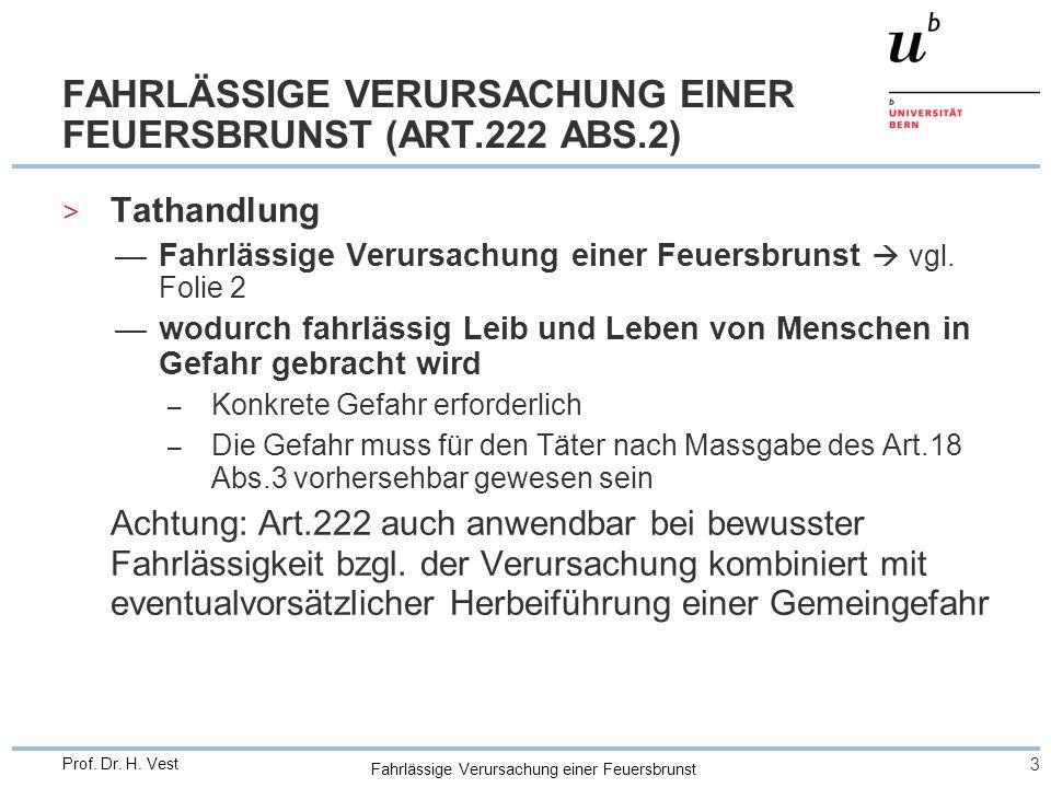 FAHRLÄSSIGE VERURSACHUNG EINER FEUERSBRUNST (ART.222 ABS.2)
