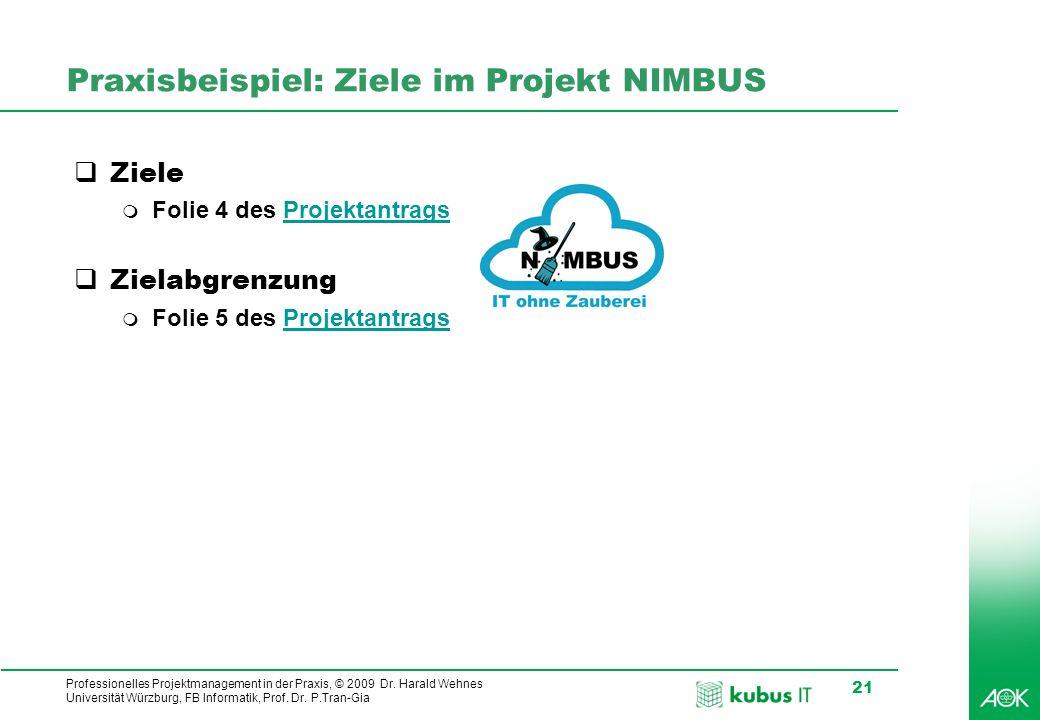 Praxisbeispiel: Ziele im Projekt NIMBUS