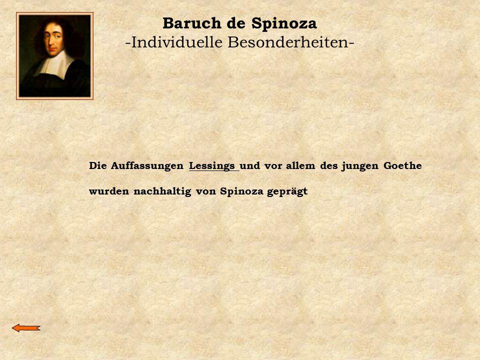 Baruch de Spinoza -Individuelle Besonderheiten-
