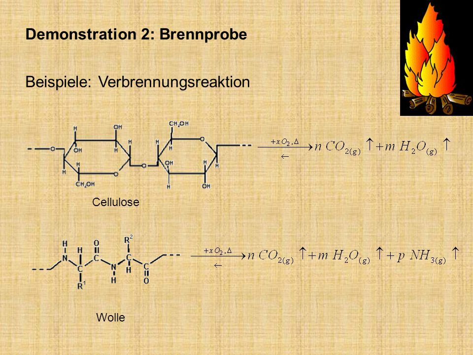 Demonstration 2: Brennprobe
