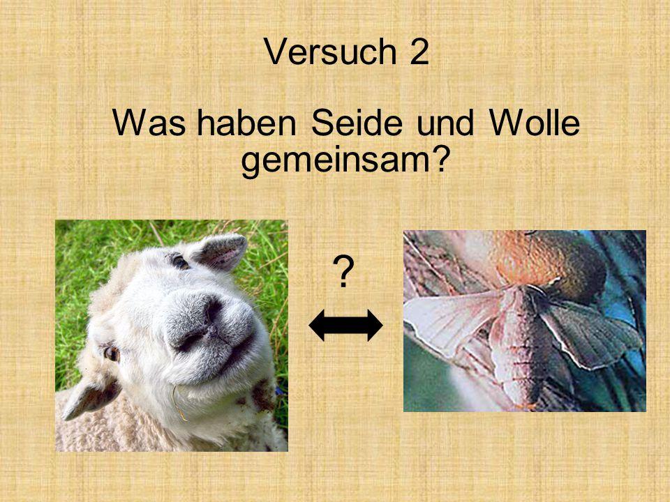 Versuch 2 Was haben Seide und Wolle gemeinsam