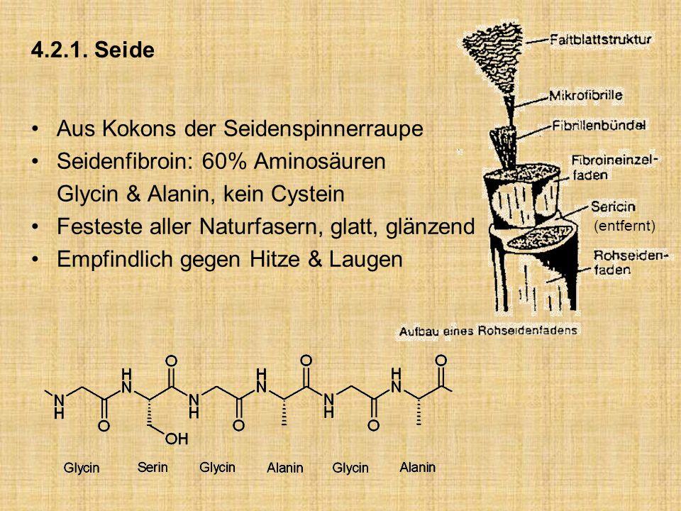Aus Kokons der Seidenspinnerraupe Seidenfibroin: 60% Aminosäuren