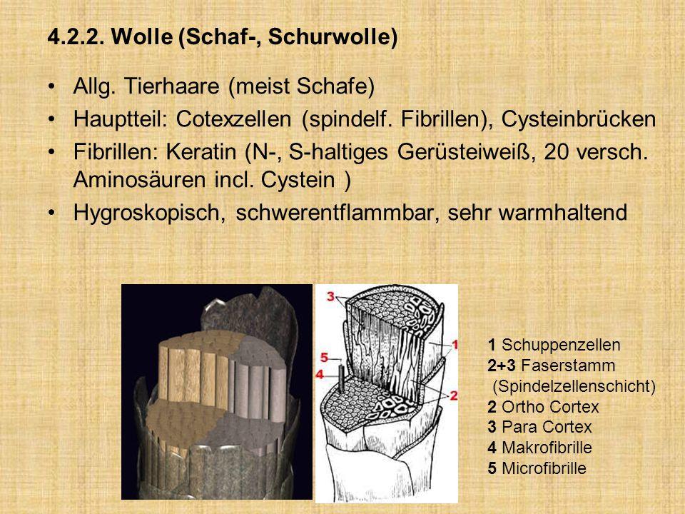 4.2.2. Wolle (Schaf-, Schurwolle)