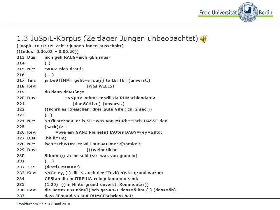 1.3 JuSpiL-Korpus (Zeltlager Jungen unbeobachtet)