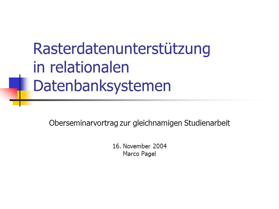 Rasterdatenunterstützung in relationalen Datenbanksystemen
