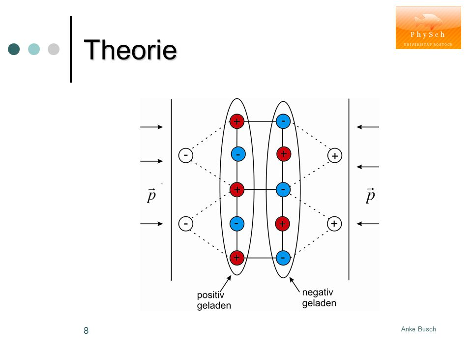 Theorie Anke Busch