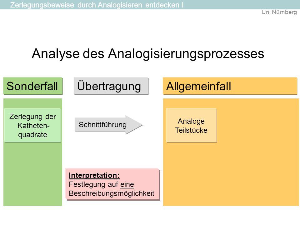 Analyse des Analogisierungsprozesses