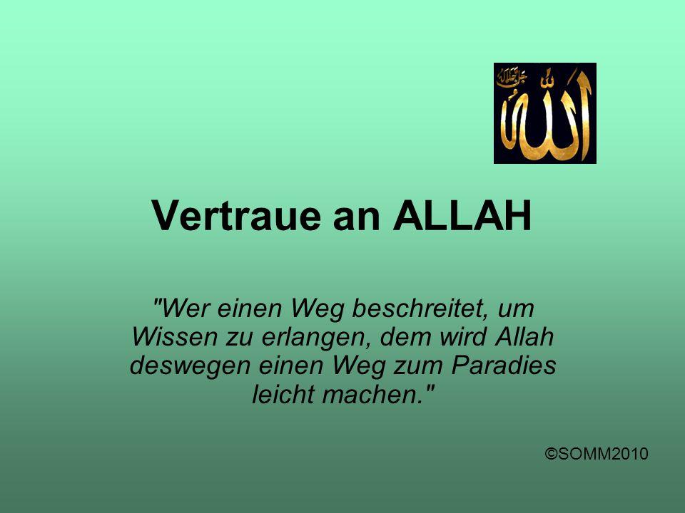 Vertraue an ALLAH Wer einen Weg beschreitet, um Wissen zu erlangen, dem wird Allah deswegen einen Weg zum Paradies leicht machen.