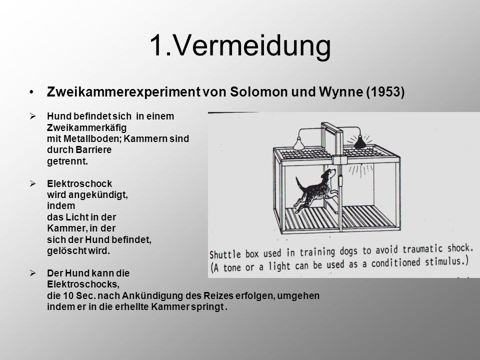 1.Vermeidung Zweikammerexperiment von Solomon und Wynne (1953)