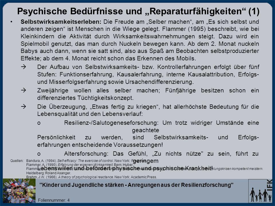 """Psychische Bedürfnisse und """"Reparaturfähigkeiten (1)"""