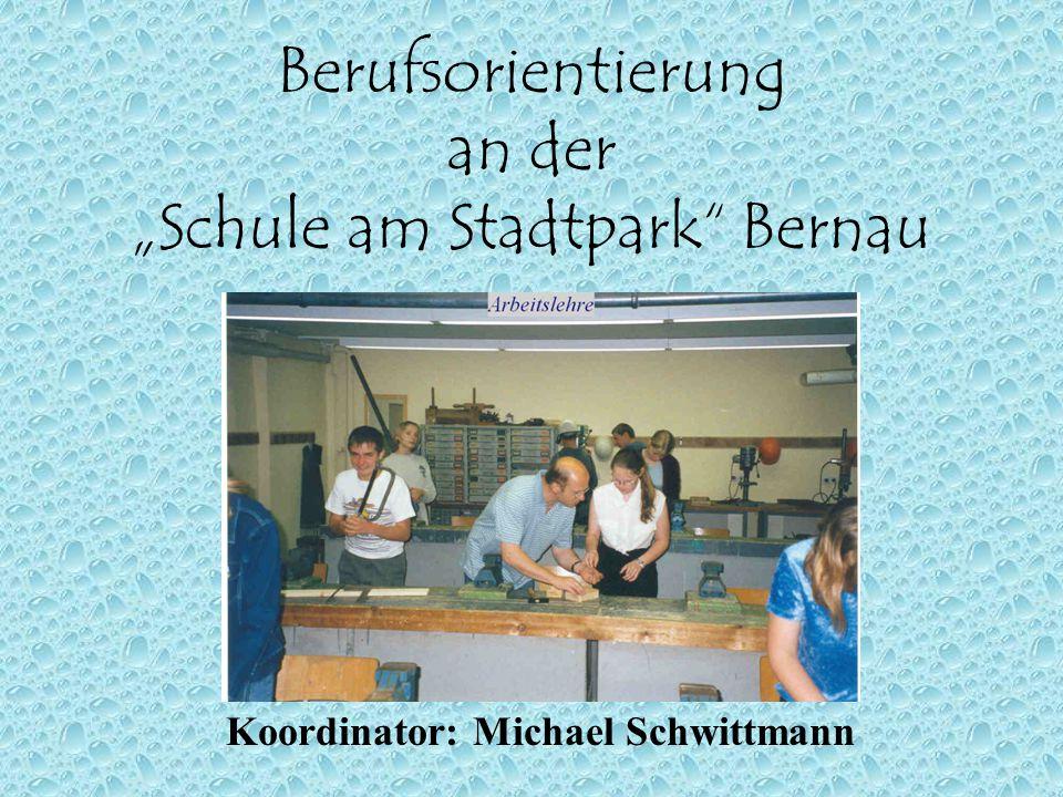 "Berufsorientierung an der ""Schule am Stadtpark Bernau"