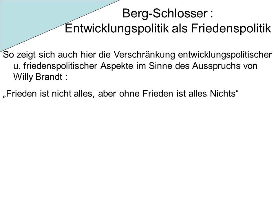 Berg-Schlosser : Entwicklungspolitik als Friedenspolitik