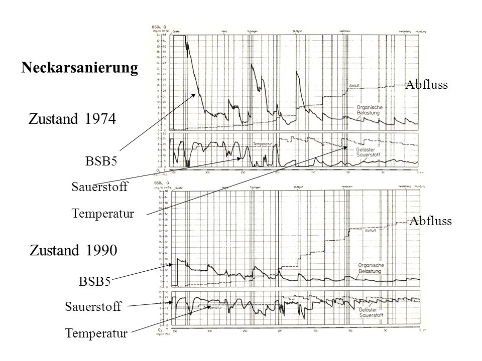 Neckarsanierung Zustand 1974 Zustand 1990 Abfluss BSB5 Sauerstoff
