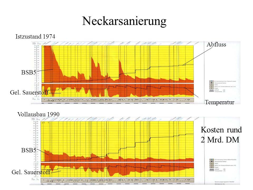 Neckarsanierung Kosten rund 2 Mrd. DM Istzustand 1974 Abfluss BSB5