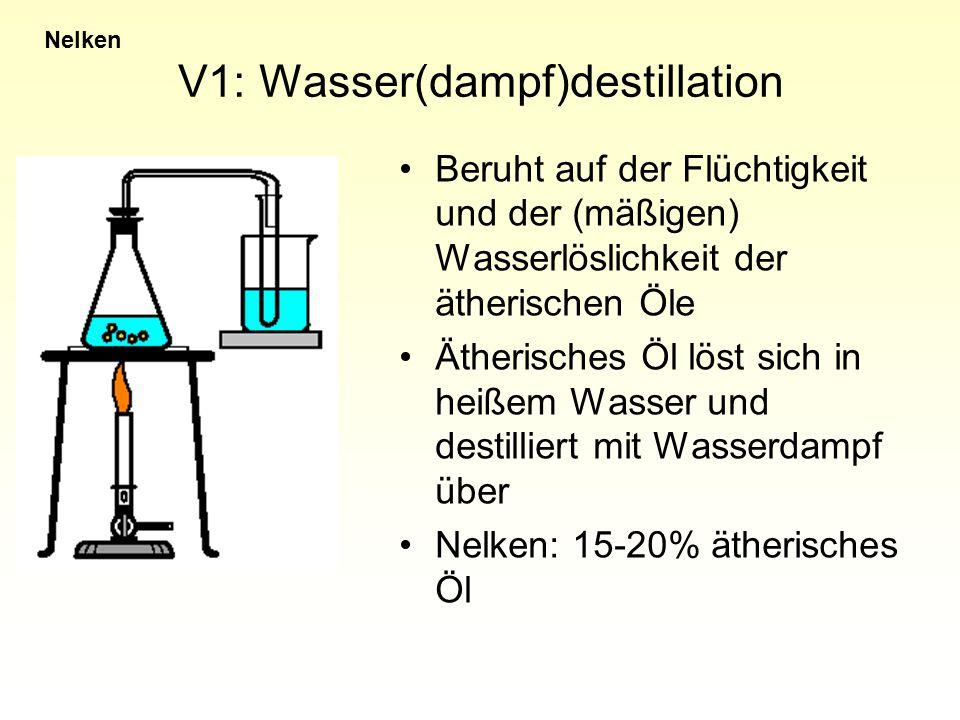 V1: Wasser(dampf)destillation