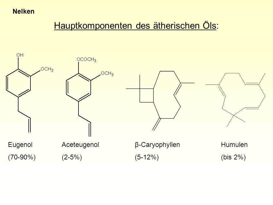 Hauptkomponenten des ätherischen Öls: