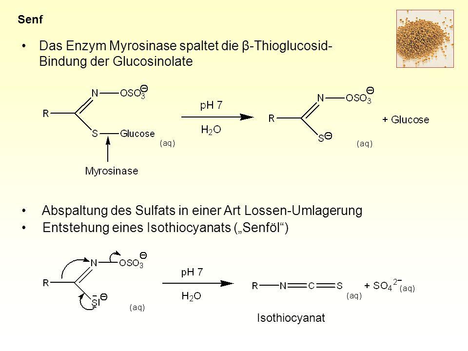 Abspaltung des Sulfats in einer Art Lossen-Umlagerung