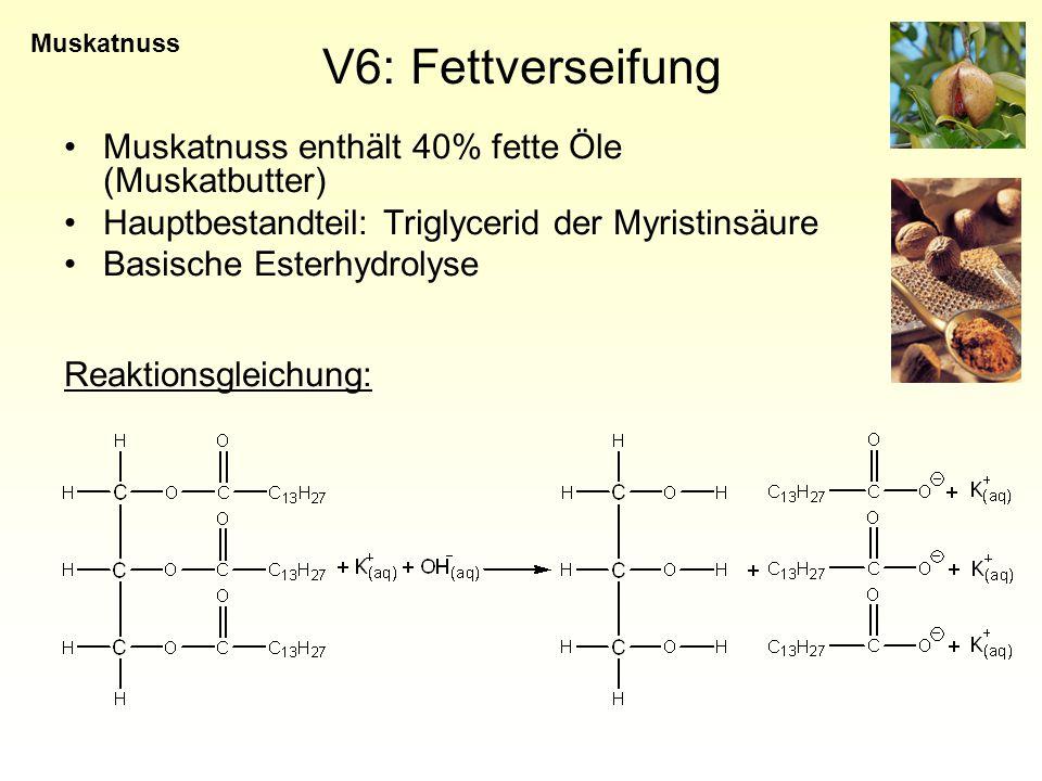 V6: Fettverseifung Muskatnuss enthält 40% fette Öle (Muskatbutter)