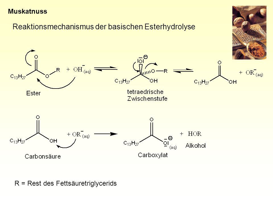 Reaktionsmechanismus der basischen Esterhydrolyse