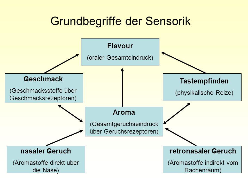 Grundbegriffe der Sensorik